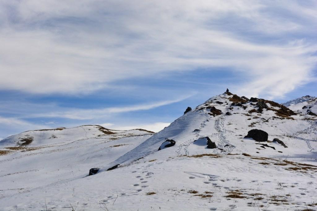 Gurson Bugyal top in Auli, uttarakhand