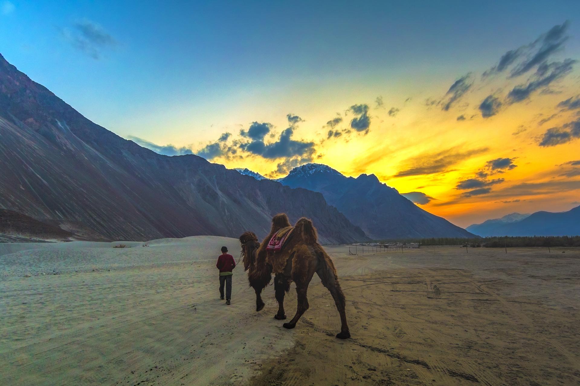 Bawray Banjaray In Ladakh